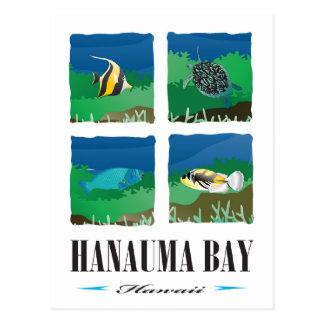 Hanauma Bay Hawaii - 2014 Vacation Postcard