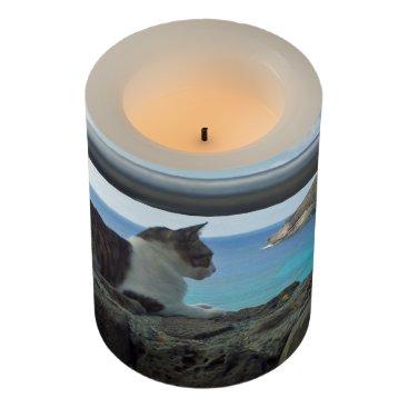 Hawaiian Themed Hanauma Bay Hawaii Cat Flameless Candle