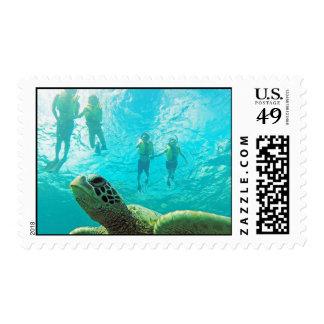 Hanauma Bay Hawaii Honu Turtle Stamps
