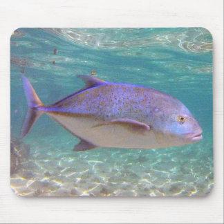 Hanauma Bay Hawaii Jack Fish - Ulua Mouse Pad