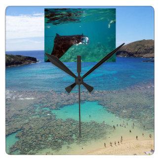 Hanauma Bay Hawaii Manta Ray Clock