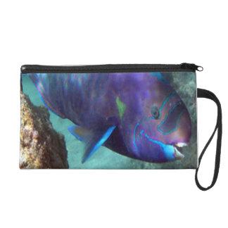 Hanauma Bay Hawaii Parrot Fish Wristlets