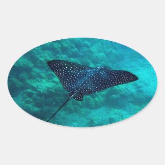 Hanauma Bay Hawaii Spotted Eagle Ray Oval Sticker
