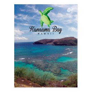 Hanauma Bay Hawaii Turtle Post Card
