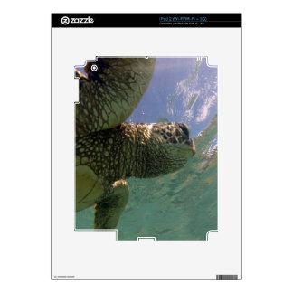 Hanauma Bay Hawaii Turtle Decals For The iPad 2