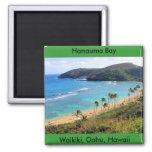 Hanauma Bay, Honolulu, Oahu, Hawaii View 2 Inch Square Magnet