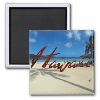 Hanauma Bay Oahu Hawaii Magnet