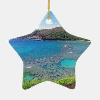 Hanauma Bay Oahu Hawaii Christmas Tree Ornaments