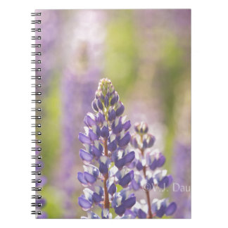 Hancock County Lupines jpg Spiral Note Books