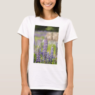 Hancock County Lupines .jpg T-Shirt