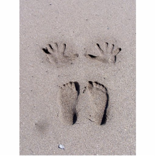 Hand and Feet prints in Florida beach sand Photo Sculpture Magnet