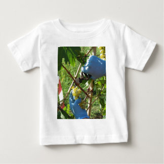 Hand cutting white grapes, harvest time baby T-Shirt