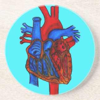 Hand Drawn Aqua Anatomical Heart Drink Coaster