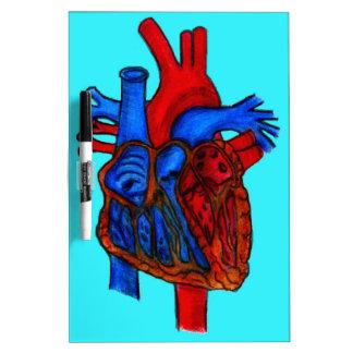 Hand Drawn Aqua Anatomical Heart Dry Erase Board