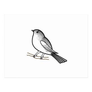 Hand drawn bird on a twig postcard