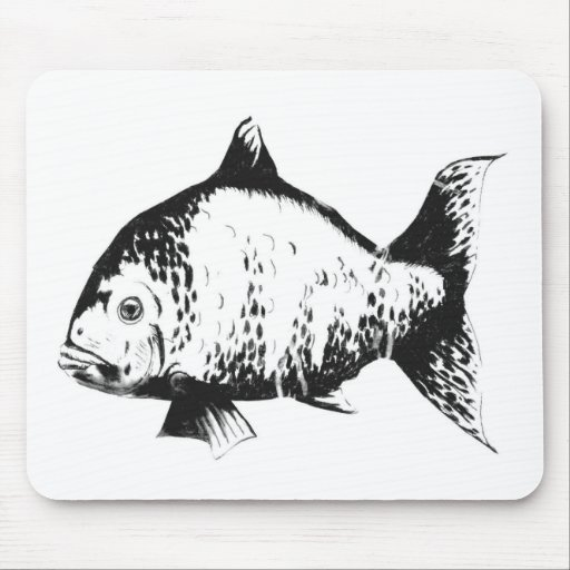 Hand drawn fish mouse pad