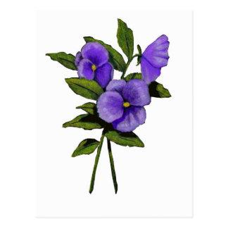 Hand Drawn Purple Pansies On White Postcard