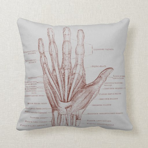 How To Make A Decorative Pillow By Hand : Hand fingers muscles - anatomy throw pillow Zazzle