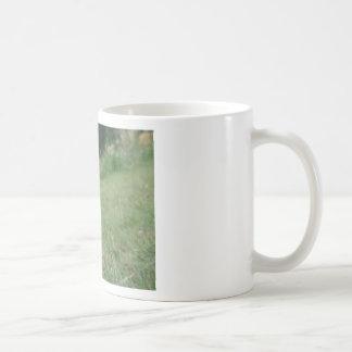 Hand holding a smart phone and nature background coffee mug