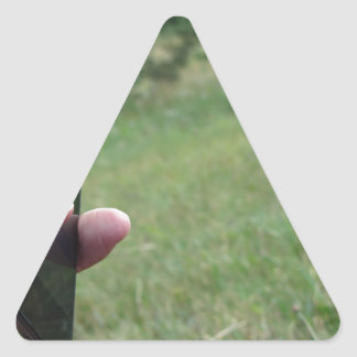 Hand holding a smart phone and nature background triangle sticker