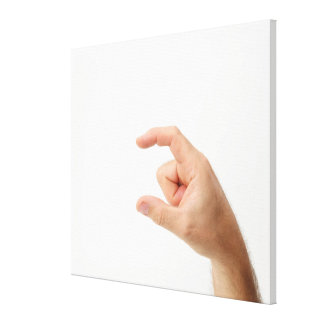 Hand Holding, Empty Gallery Wrap Canvas