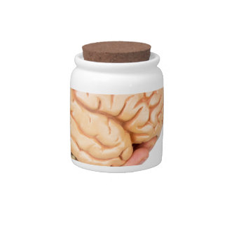 Hand holding model human brains isolated on white candy jar