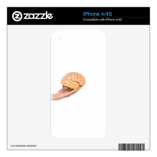 Hand holding model human brains isolated on white decals for the iPhone 4