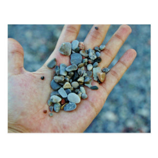 Hand Holding Some Pebbles Postcard