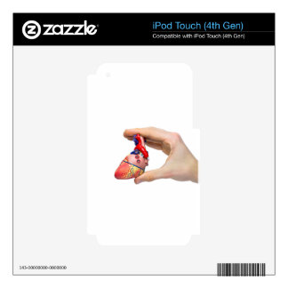 Hand holds model human heart between fingers iPod touch 4G skin