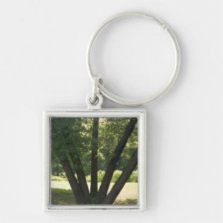 Hand Of Nature Keychain