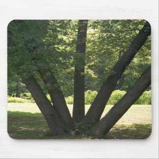 Hand Of Nature Mousepad