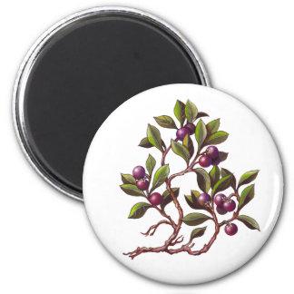 Hand Painted Fruit Berries. Magnet