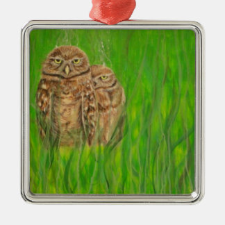 Hand painted owls with an attitude christmas ornaments