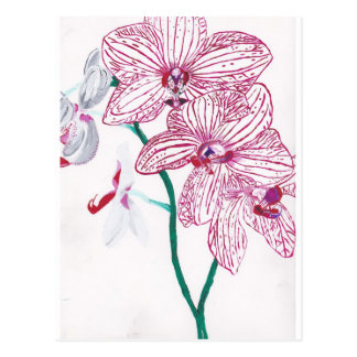 Hand Painted White Orchid design Original Postcard