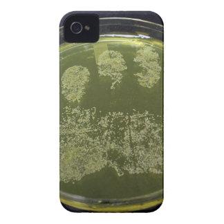 Hand Petri Dish Bacteria iPhone 4 Covers