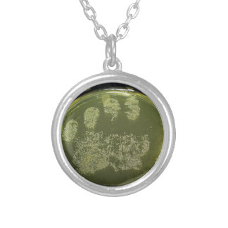 Hand Petri Dish Bacteria Silver Plated Necklace