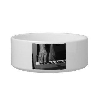 hand playing keyboard bw male music pet water bowl