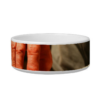 hand playing red keyboard male musician pet water bowls