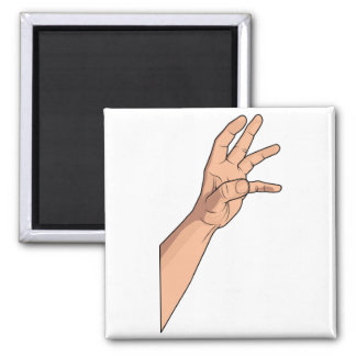 Hand Raised ~ Hand Sign and Gestures Fridge Magnets