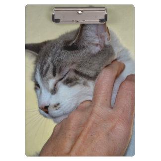 hand scratching kitten cute cat design clipboard