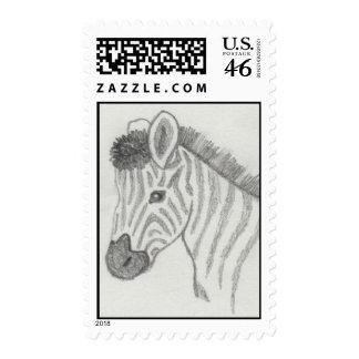 Hand sketched Baby Zebra Postage Stamp
