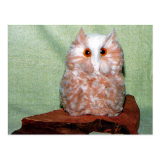Handcrafted Owl Postcard
