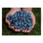Handful of Fresh Blueberries Card