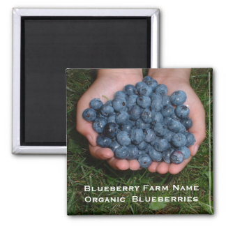 Handful of Fresh Blueberries Magnet