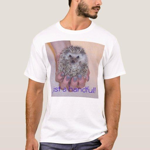 Image result for zazzle hedgehog shirt