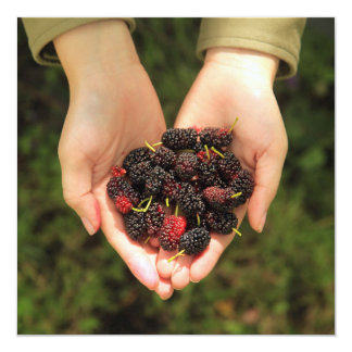 Handful of Mulberry Berries Fresh and Sweet 5.25x5.25 Square Paper Invitation Card