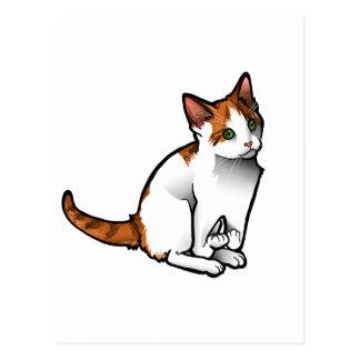 Handi-Cat Postcard
