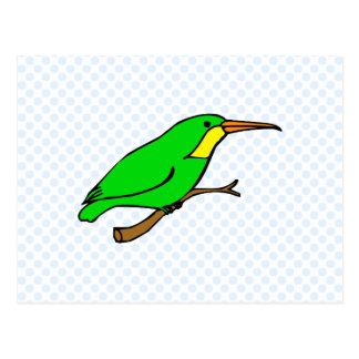 Handie Hummingbird Postcard