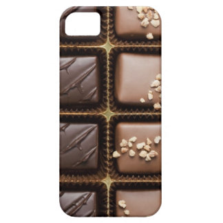 Handmade luxury chocolate in a box iPhone SE/5/5s case