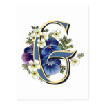 Handpainted Pansy Initial -  G Postcard
